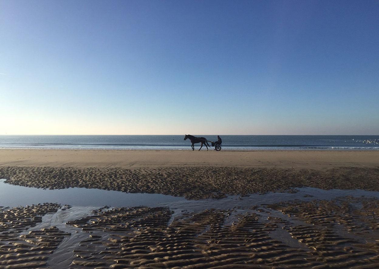 Nordseestrand mit Kutsche